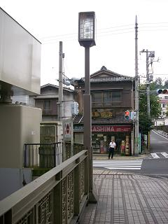 中村川の東橋F