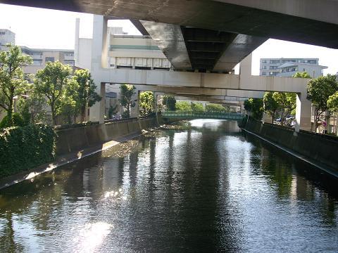 中村川の睦橋G