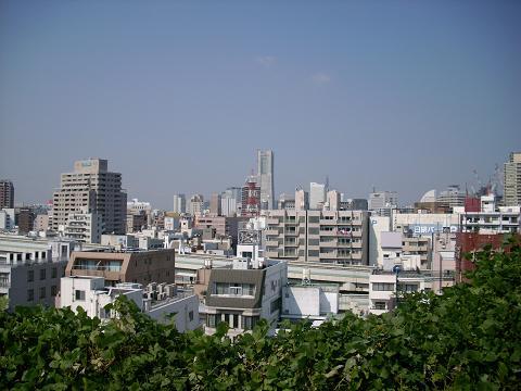 元町百段公園(浅間神社跡)G