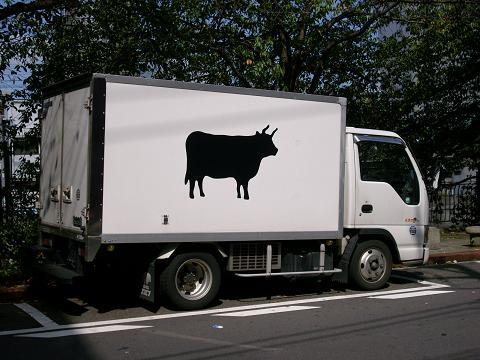 通りすがりに見かけた牛