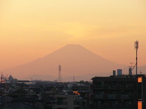 野毛山公園の吊り橋から見た富士山