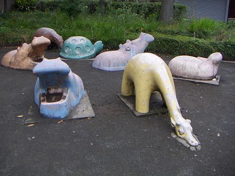 通りすがりに見かけた動物たち