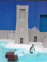 住まいはランドマークタワーのペンギン。