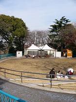 ゾウ舎跡はひだまり広場になりました。