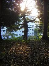 ガーデン山団地
