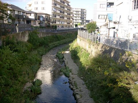大岡川の久保橋C