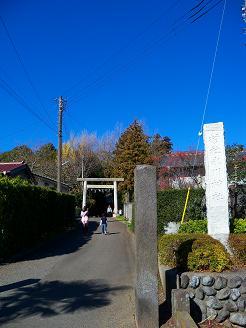 氷川神社@入間市A