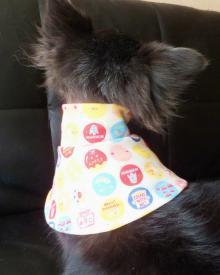 猫の介護服