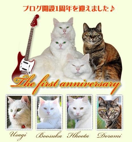 猫の弾き語り ~へぼいGuterですいません!~