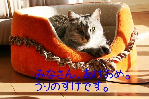 20111231-140900-008.jpg