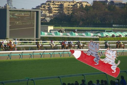 20120109-160501-クロウリin競馬場