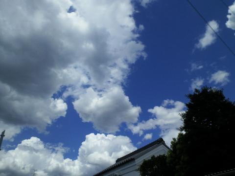 PHOTO110.jpg