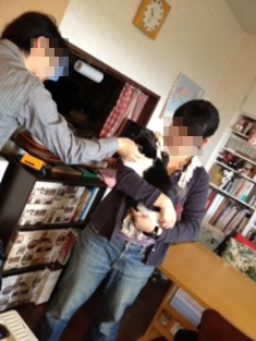 ぴーにゃん13