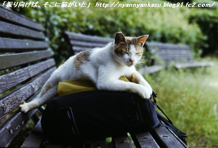 08 06 25 (2)_blog