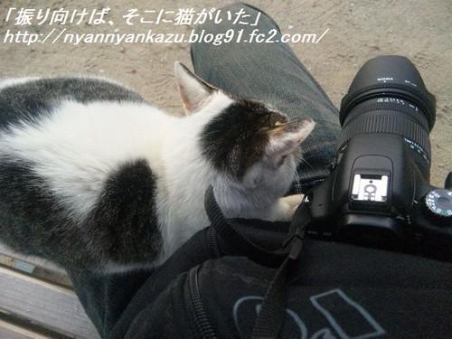 DVC00338_blog.jpg