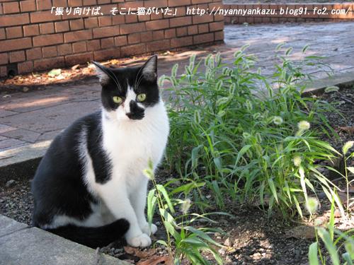 IMG_0298_blog.jpg