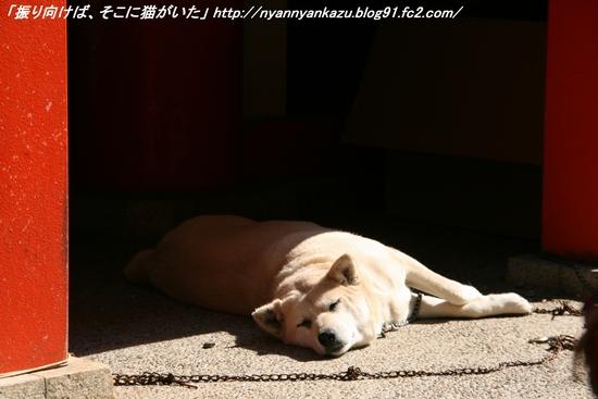 IMG_1319_blog.jpg