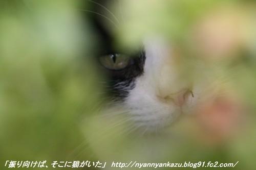 IMG_2316_blog.jpg