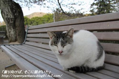 IMG_4041_blog.jpg