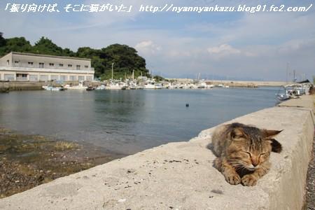 IMG_6421_blog.jpg