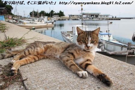 IMG_6453_blog.jpg