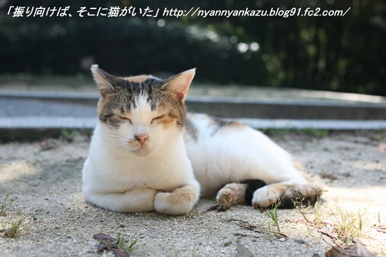 IMG_8504_blog.jpg