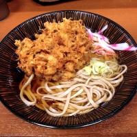 sagatanisuidobashi2