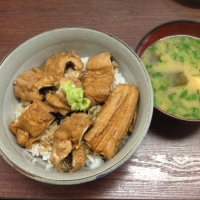 tsukijitakahashi2