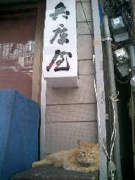 CIMG6093_20110127230842.jpg