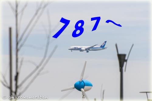 05-130601.jpg
