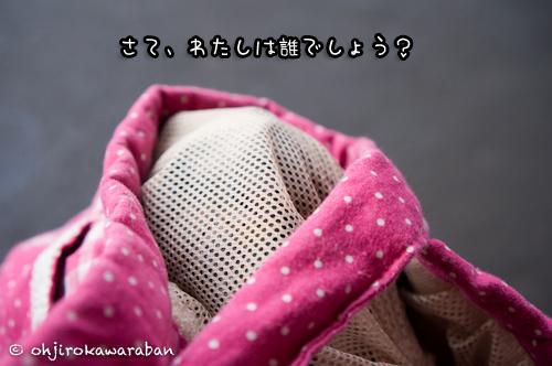 *1-DSC04381
