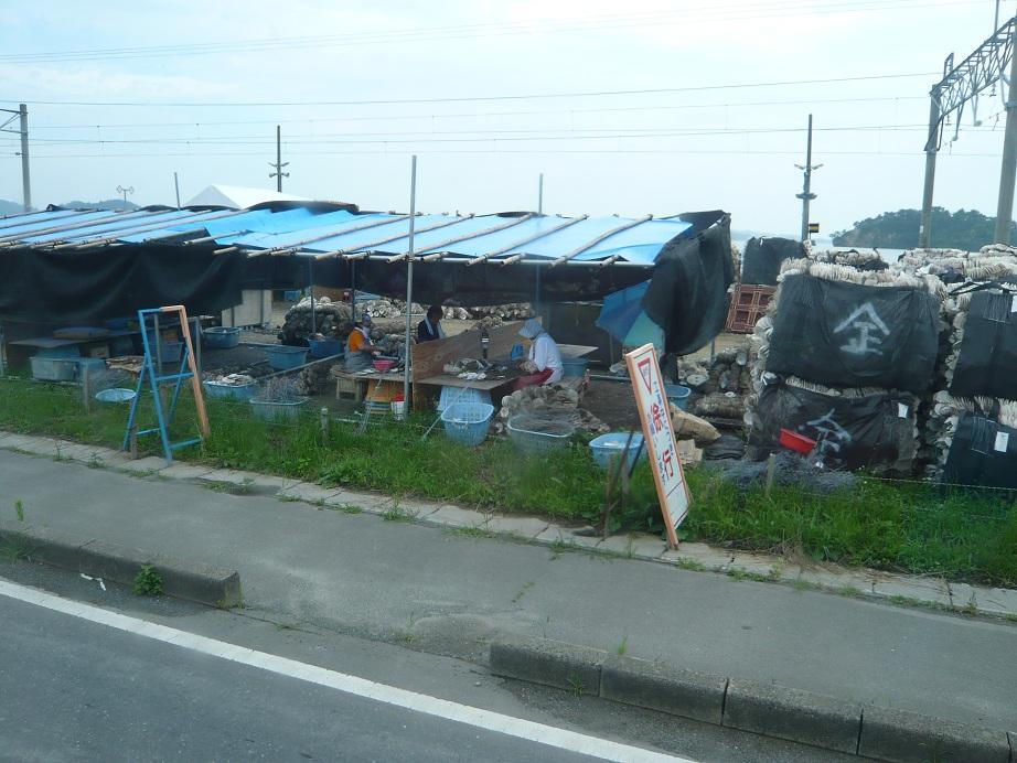 東松島あたり、バスから写した