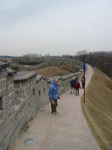 suwon の城壁が延々と続く