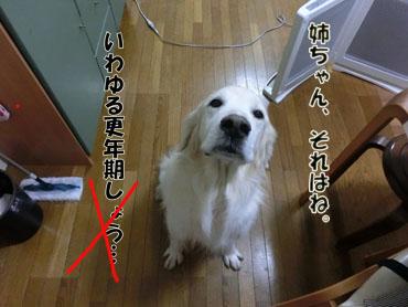 CIMG4696.jpg