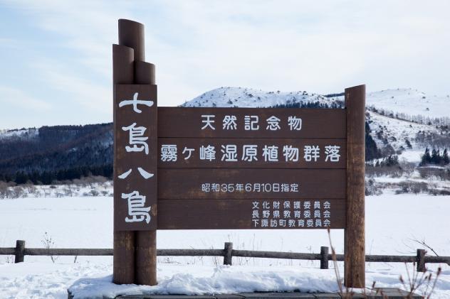八島ケ原湿原