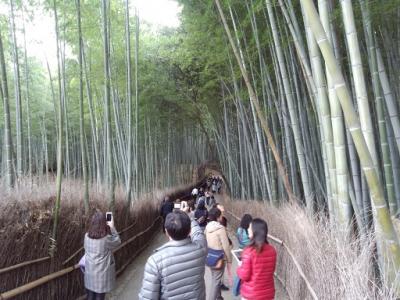 嵐山 (4)