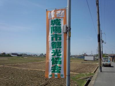 城陽花しょうぶ (6)