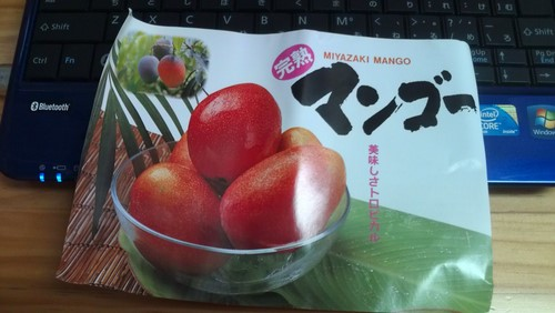 マンゴー頂きました!!