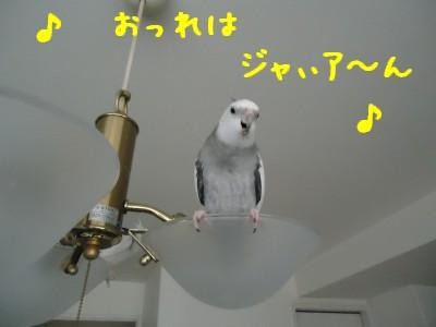動画 400