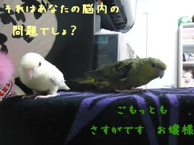 動画 023