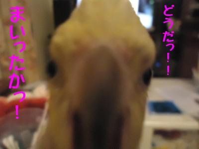 動画 473