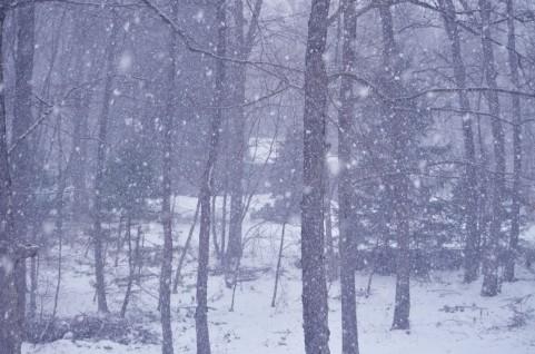 アメリカを襲った寒波の写真が、まるでデイ・アフター・トゥモロー