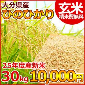 25年産 大分県産ヒノヒカリ玄米30㎏