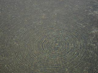 六供浄水場 緩速ろ過池