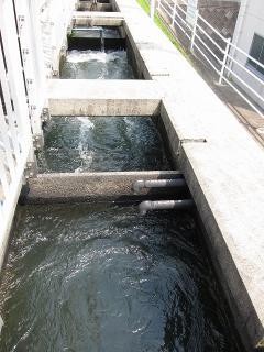 男川浄水場 混和池