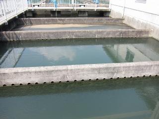 男川浄水場 フロック形成池