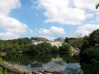 池から見た美術博物館