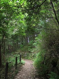 冒険の小道