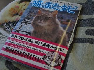 猫にまたタビ