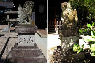 深川神社の狛犬